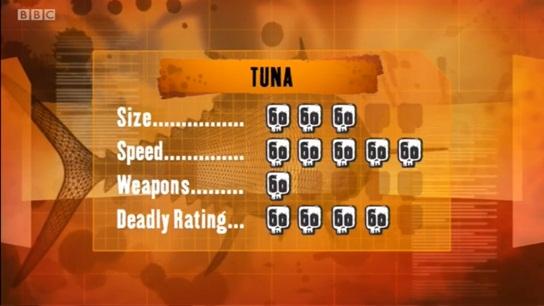 File:S1 DR tuna.jpg