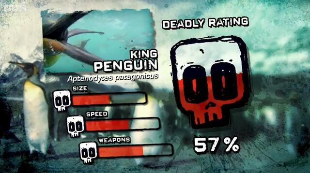 File:PTP DR king penguin.jpg