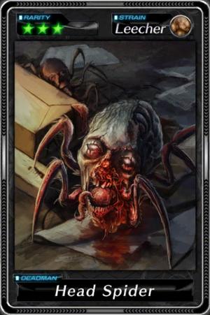 -001026--Head Spider-