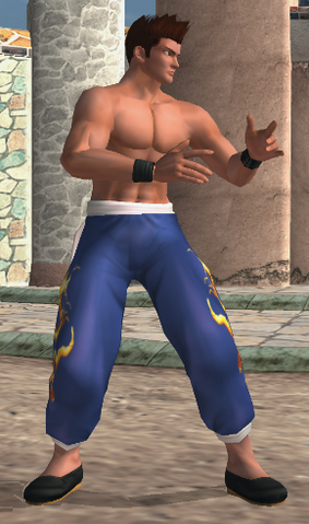 File:DOA2 JannLee C4.png