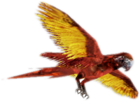 Zombie parrot red CTYD
