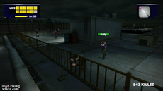 Dead rising infinity mode sally (2)