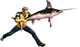 Dead rising swordfish combo