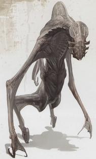 Tau volantis alien concept art