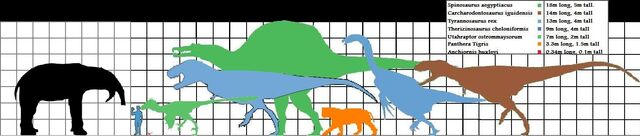 File:Deinotherium and theropod scale.jpg