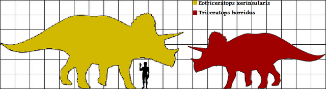 File:Eotrike and Trike scale.png