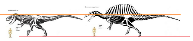 File:Paudies Spino rex scale.png