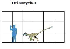 File:True Deinonychus size.png