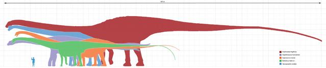 File:Longest dinosaurs1.png