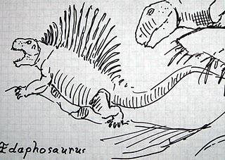 File:An Edaphosaurus.jpg