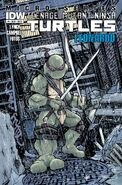 IDW-One-shot Leonardo Cover-A Petersen