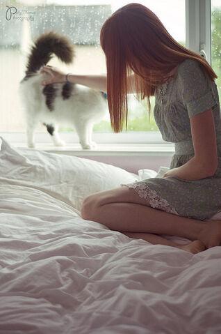 File:Beautiful,cat,ginger,girl,red,hair,redhead-97b4ea43b5c7f3c910dd623eb8c405f9 h.jpg