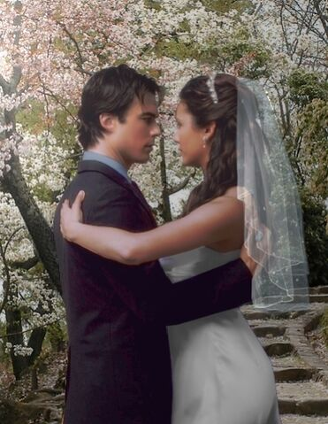 File:Elena-and-Damon-s-wedding-the-vampire-diaries-.jpg