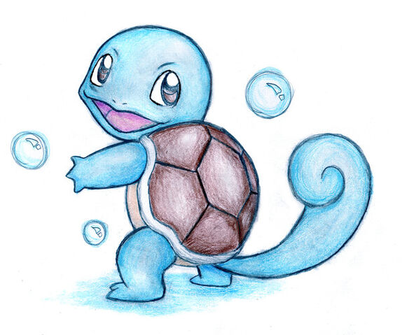 File:The Awkward Turtle.jpg