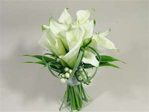 File:Flowers1.jpg