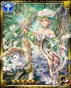 White Rose Queen Blanche