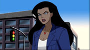 Diana Prince (Justice League Unlimited)2