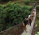 The Bhutan Yeti