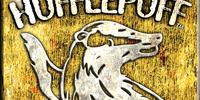 Hufflepuff Quidditch Team