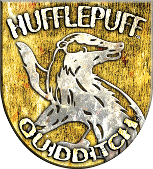 File:Hufflepuff™ Quidditch™ Badge.png