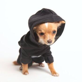 Crossbrush Doggie Hoodie