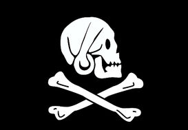 Pirate Flag of Henry Every