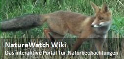 Datei:NatureWatch Wiki - Spotlight.jpg