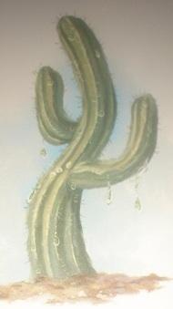 File:Raindrop Cactus.jpg
