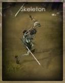 File:D3Skeleton..jpg