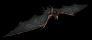 Vile bat