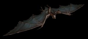 File:Vile bat.png