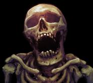 SkeleP