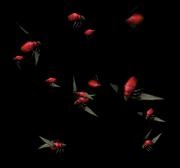 Vile swarm