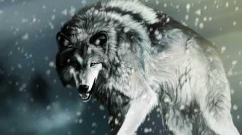 Hi Finesse Music ~ The Wolf