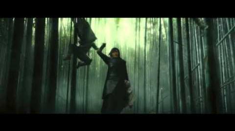 The Warrior's Way - Crossing Swords