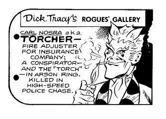 TorcherRG
