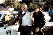 DHS- Stacy Keach in Irresistible Force