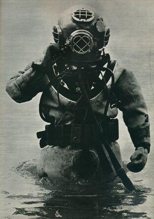 Diversuit