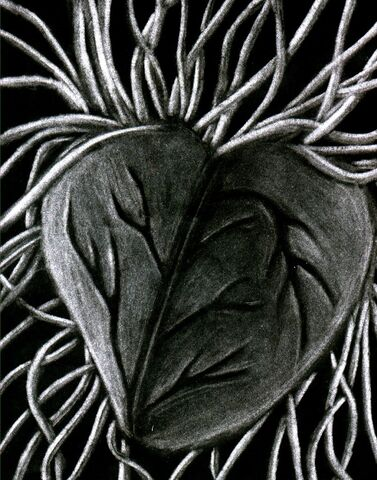 File:The Chaos Heart by TheChaosHeart.jpg