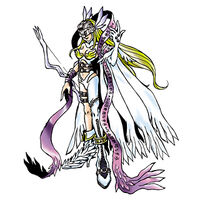 Angewomon b