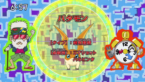 DigimonIntroductionCorner-Patamon 1