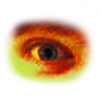 File:Warriors eye.png