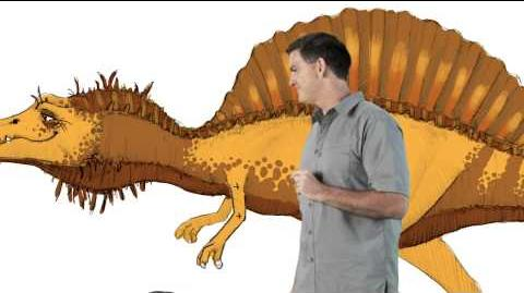 Spinosaurus - Dinosaur Train - The Jim Henson Company