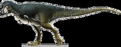 Lythronax-bigger