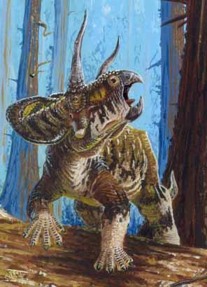 File:Zuniceratops Todd-Marshall.jpg