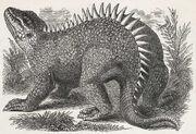 Hylaeosaurus old picture