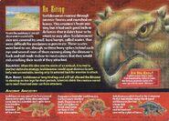 Scelidosaurus back