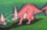 LBT Torosaurus