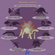 Stegosaurus lite infographics by mcmikius-d9fxmo8