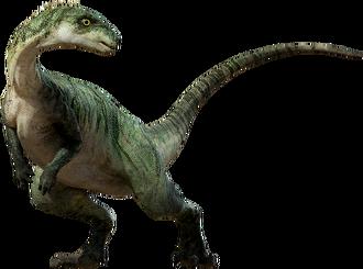 Large-ornitopod